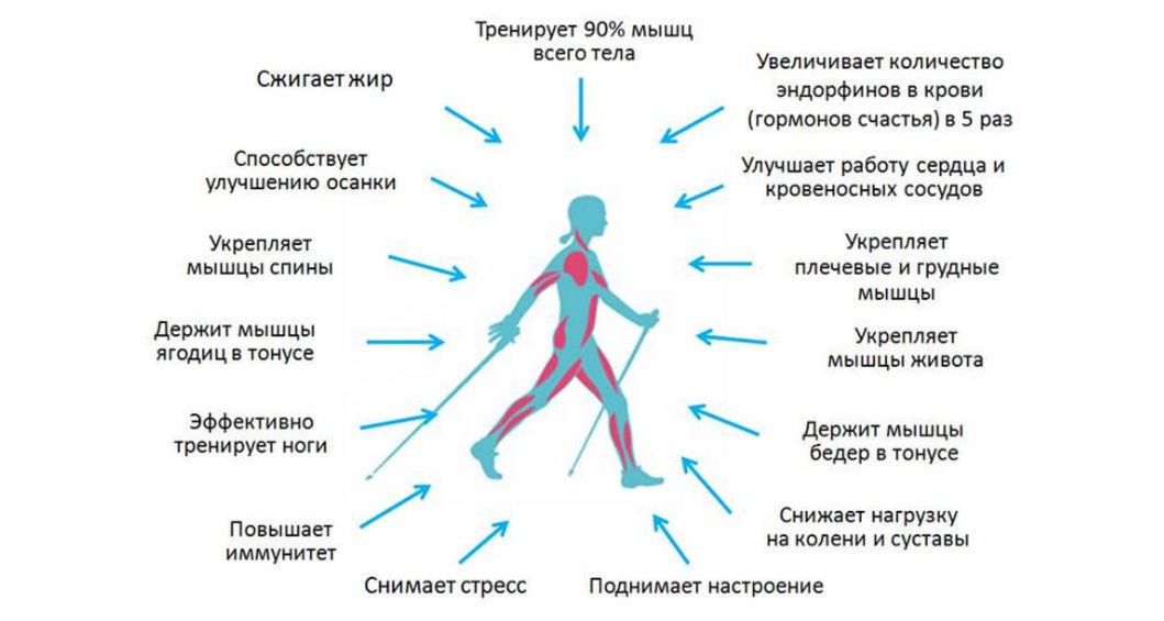 skandinavskaya-xodba